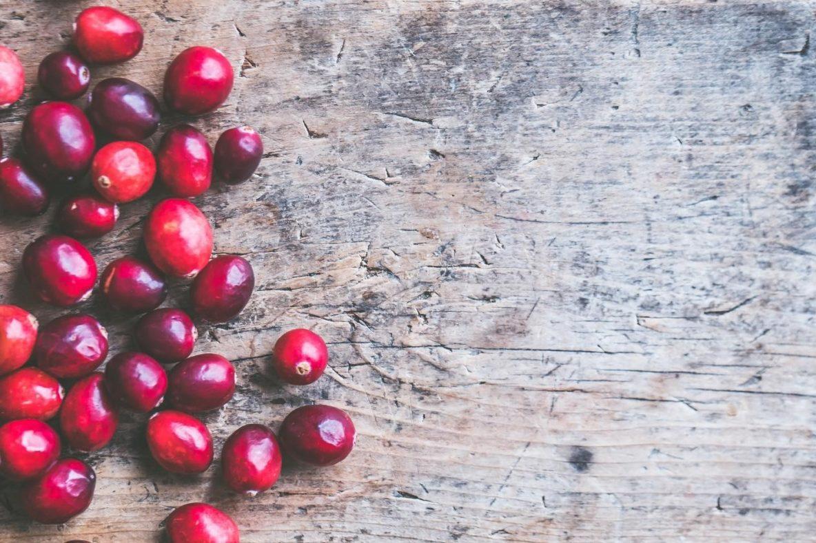 5 Unique Sources Of Coffee Beans